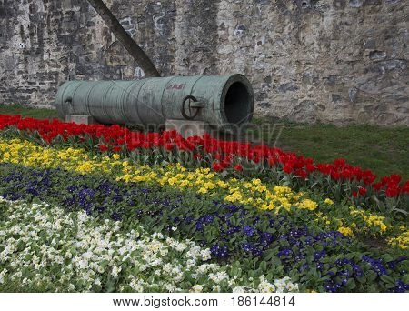 Tulip garden historical ottoman cannon. Used at the conquest of istanbul