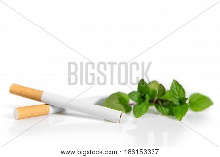 New Law in Germany Menthol cigarettes are forbidden cigarettes and Peppermint on white