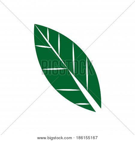 leaf icon, foliage natural flat design style vector illustration