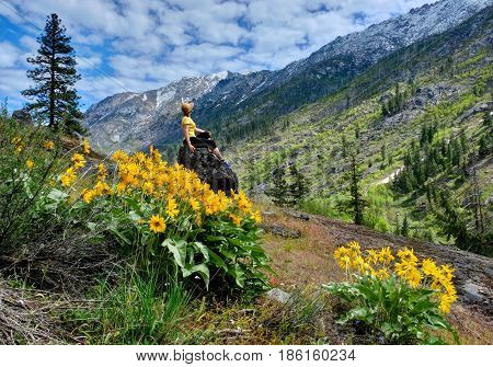 Woman meditating in nature. Arnica in  alpine meadows in Cascade Mountains. Oregon. The United States.