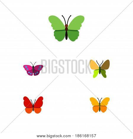 Flat Monarch Set Of Monarch, Beauty Fly, Archippus And Other Vector Objects. Also Includes Archippus, Monarch, Moth Elements.