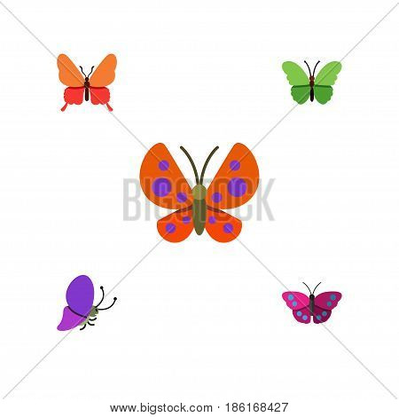 Flat Monarch Set Of Milkweed, Moth, Summer Insect And Other Vector Objects. Also Includes Butterfly, Archippus, Milkweed Elements.