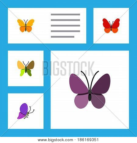 Flat Monarch Set Of Violet Wing, Beauty Fly, Summer Insect And Other Vector Objects. Also Includes Milkweed, Summer, Monarch Elements.
