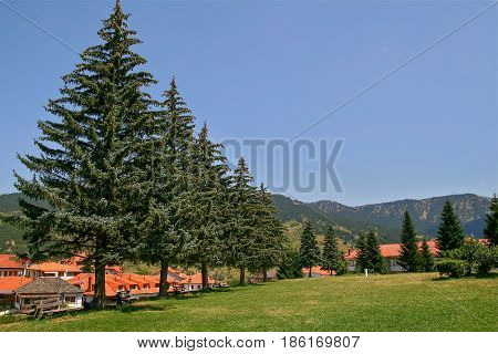 part view of the beautiful mountainous touristic greek village named Metsovo in Greece