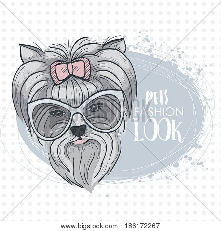Vector pets fashion look, elegant dog woman's face with bow and sunglasses
