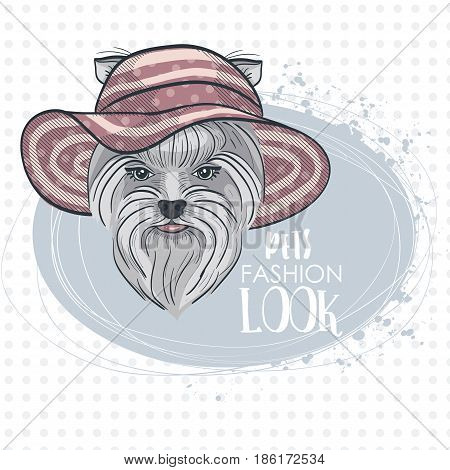 Vector pets fashion look, elegant dog womans face with wide brimmed hat