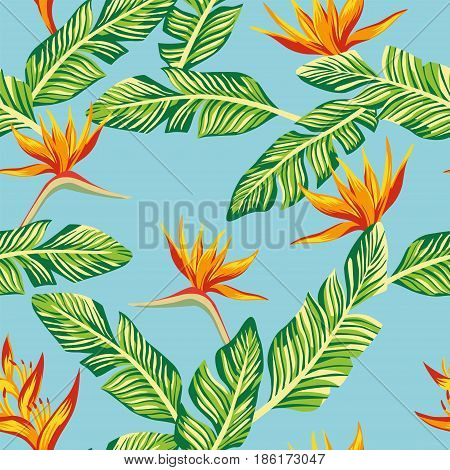 Beach cheerful seamless pattern wallpaper of tropical green leaves of palm trees and flowers bird of paradise (strelitzia) on a blue background