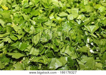 Finely chopped fresh green parsley closeup background