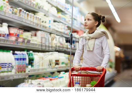 Portrait of pretty little girl grocery shopping in supermarket pushing tiny trolley cart with food