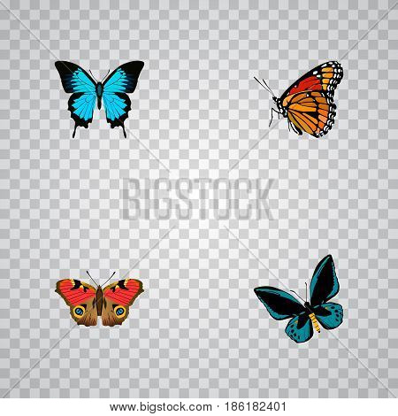Realistic American Painted Lady, Demophoon, Papilio Ulysses And Other Vector Elements. Set Of Beauty Realistic Symbols Also Includes Sky, Butterfly, Monarch Objects.