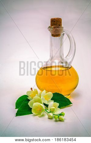 Jasmine oil concept spa with jasmine flowers on a white background. Aromatherapy. Retro style