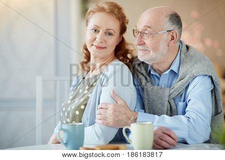 Happy and amorous senior couple sitting ni the kitchen