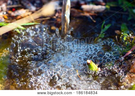 Air bubbles in a puddle on the surface of the earth with a rapid flow of water for watering the grass