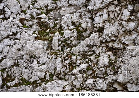 Old limestone wall covered with green moss,
