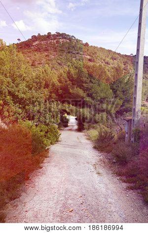 Rural road near
