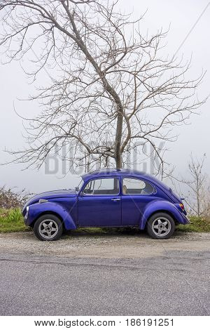 Pelion mountain Greece - VOLOS JANUARY 2017: Blue cyan Volkswagen Beetle vintage car parked in a street front of a tree.