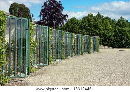 Grape greenhouses in Potsdam Sanssouci schloss , Germany