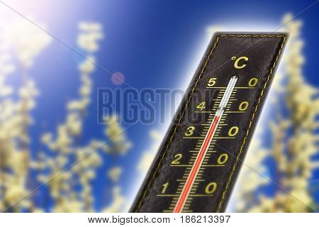 Thermometer with hot temperature catkin background and lens flare