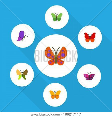 Flat Moth Set Of Summer Insect, Moth, Milkweed And Other Vector Objects. Also Includes Archippus, Moth, Milkweed Elements.