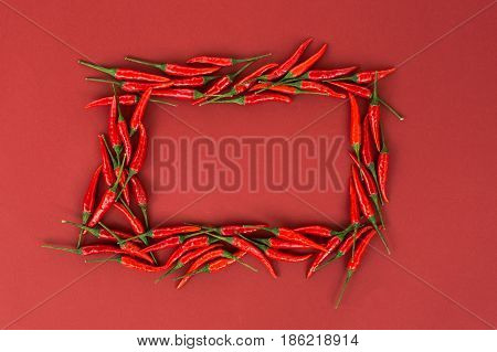 red hot chili peppers, popular spices concept - beautiful composition of red hot chili peppers pods laid in the form of colorful frame on red background, top view, flat lay, free space for text