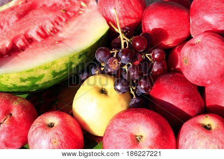 crop of August ripe fruits apples watermelon and grape