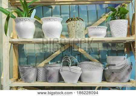 Shelving with pots in flower shop