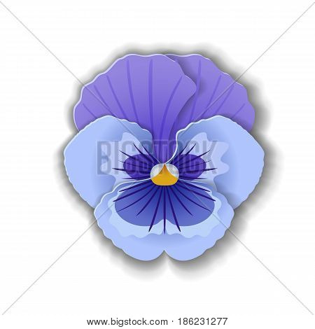 Cute pansy flower in paper art style isolated on white background. Vector illustration.