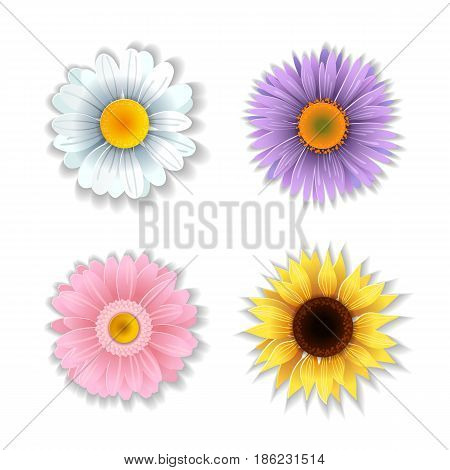 Set of cute paper art flowers. Stylized chamomile, sunflower, aster, gerbera. Origami flowers collection. Vector illustration.