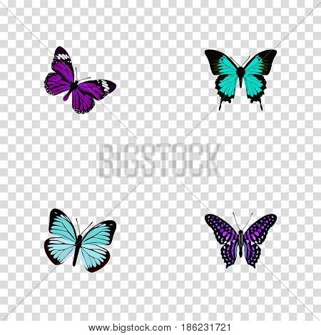 Realistic Butterfly, Lexias, Polyommatus Icarus And Other Vector Elements. Set Of Beauty Realistic Symbols Also Includes Purple, Hairstreak, Butterfly Objects.