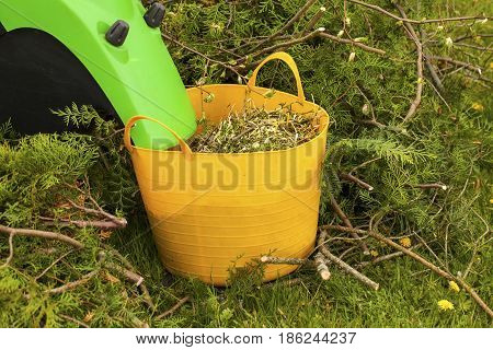 Electric garden shredder in a spring garden with a mulch basket