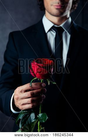 Cropped photo of business man holding a red rose in his hand. He is wearing formal wear