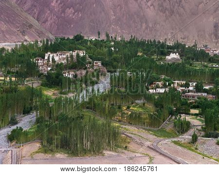 The mountain village of Alchi in the Ladakh valley: white houses and temples on the hills green trees and fields the river bed of the Indus to the background the pink slopes of the mountain India.