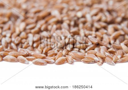 Useful grits. Groats spelt. Background, texture, placer