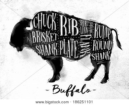 Poster buffalo cutting scheme lettering chuck brisket shank rib plate flank sirloin shortloin rump round shank in vintage style drawing on dirty paper background