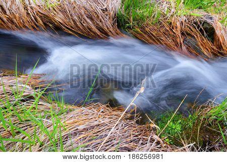 Small creek during spring runoff season