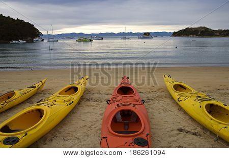 Golden Sand Beach New Zealand