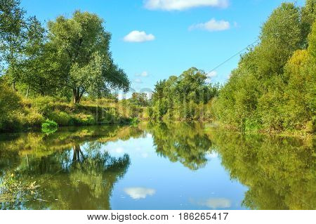 forest lake in clear sunny day. beautiful summer rural landscape with river and forest. reflection in water of blue sky and white clouds