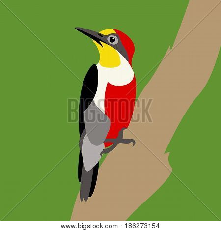 Woodpecker on the branch vector illustration style Flat