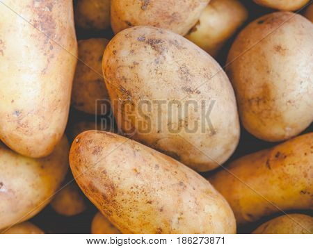 Potato Vegetable, Faded Vintage Look