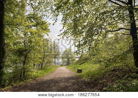Beautiful pathway trough early horizontal Danish springtime beech forest. Vintage sailboat and bridge in the background.