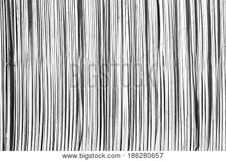 In Oman Abstract  Texture Of A Bamboo Wall Background