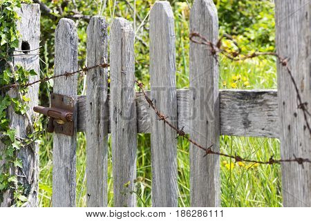 Latch on a wooden door by asturias