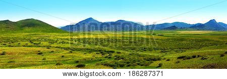 Nature Of East Kazakhstan. Panorama spring green steppe and mountains.