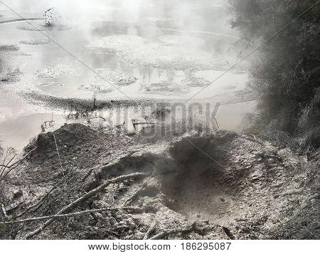 Volcanic Hot Mud Rotorua New Zealand