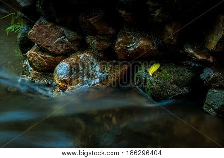 Yellow leaf on the rock with waterfall in dark low key and long exposure with copy space
