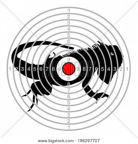 Target shoot range in centre of chameleon
