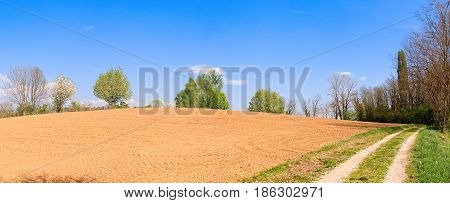 Plowed Field And Country Road And Blue Sky.
