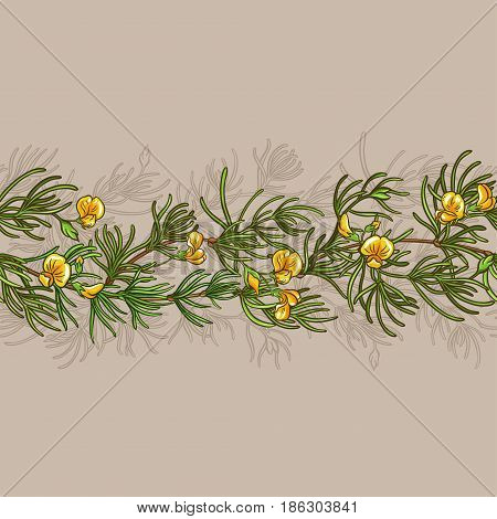 rooibos branches seamless pattern on color background