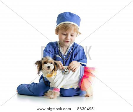 Child little boy examining puppy dog, isolated on white background