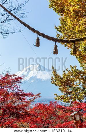Mountain Fuji and japanese temple rope